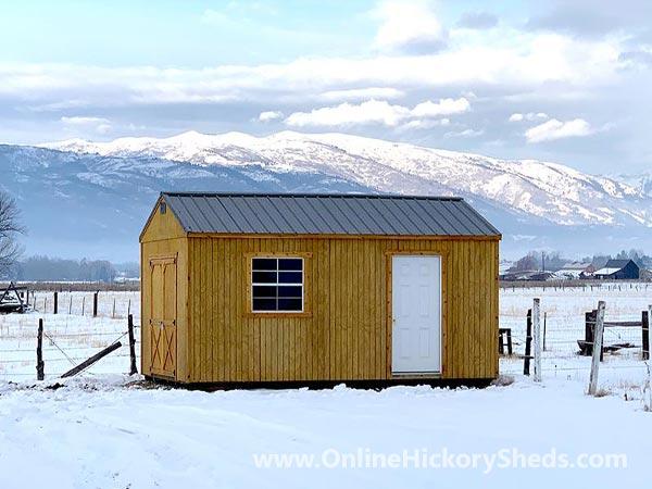 Hickory Sheds Lofted Tiny Room 1 Window